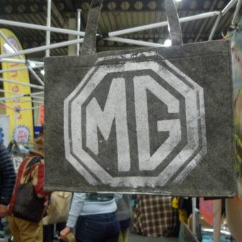 MG Informatiedag Houten