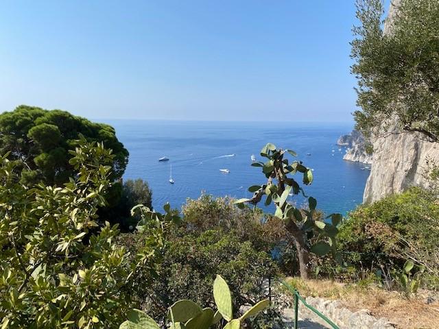VZ 13 Capri