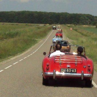 Zeelandrit Brabant 2011 093